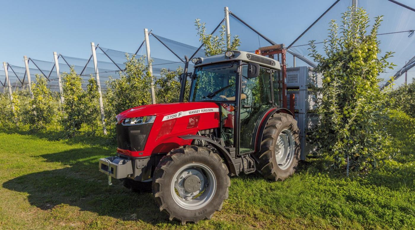 MF 3700 traktorius 2