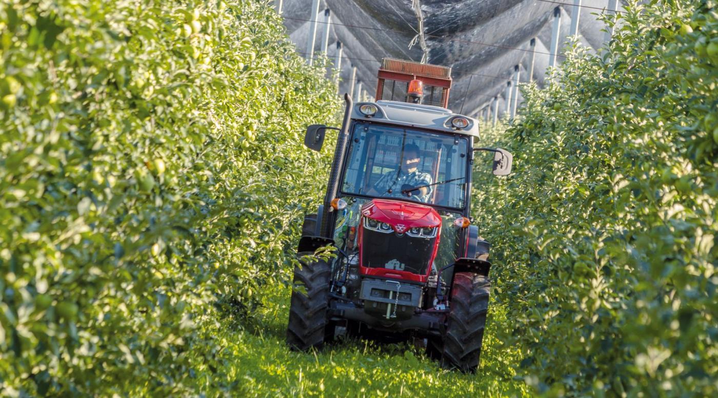 MF 3700 traktorius 3